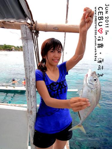 看海豚11.jpg